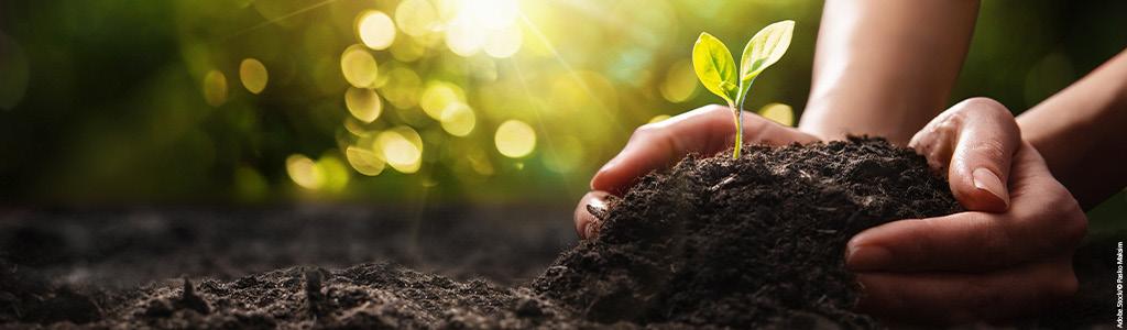 Drei von vier Beschäftigten wünschen sich nachhaltigen Arbeitgeber